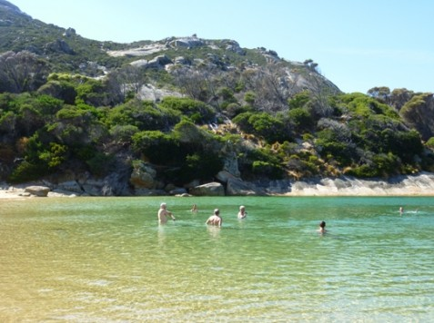 Time for a swim - Flinders Island
