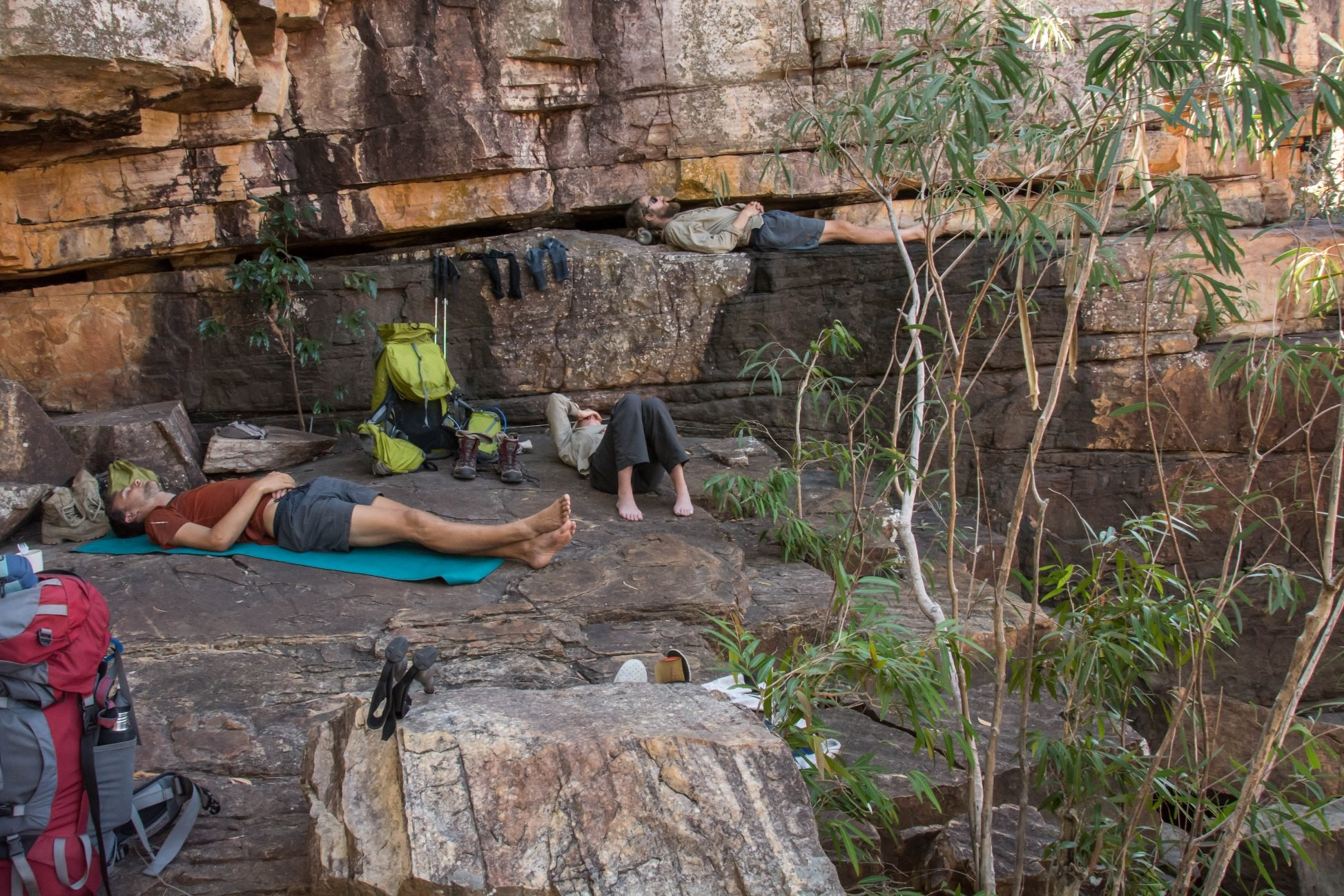 Afternoon siesta in Kakadu