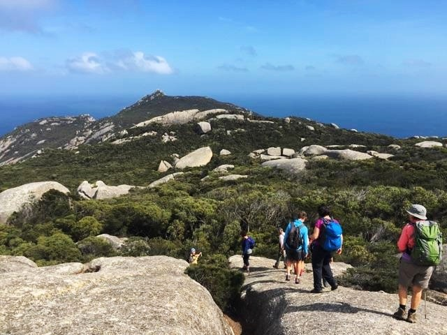 Mt Killiekrankie Flinders Island