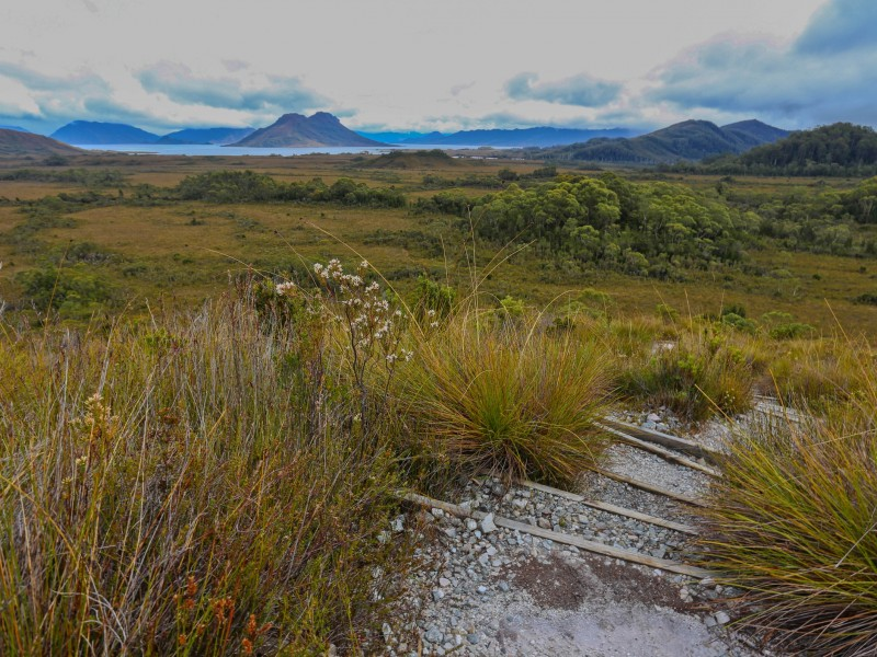 Port Davey Track Walking Tours